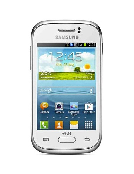 Galaxy Young (S6310)